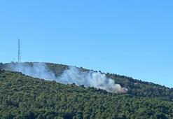 Son dakika...  İstanbulda orman yangını Kontrol altına alındı