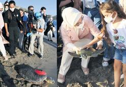 Kaplumbağalar denize uğurlandı