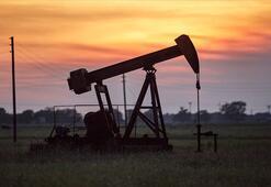 Petrolün varili 45,01 dolar