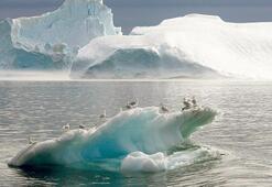 28 trilyon ton buzul yok oldu