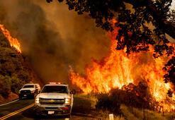 Californiada orman yangınları yedi can aldı