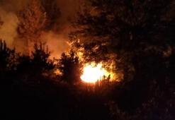 Son dakika... Adanadaki orman yangınıyla ilgili flaş gelişme 3 kişi gözaltına alındı