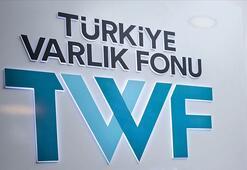 TVF: Kamu sigorta şirketlerinin birleşmesi tamamlandı