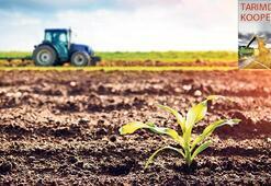 Tarımsal kalkınmaya 'birlik' formülü