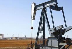 Petrolün varili yeni haftaya nasıl başladı