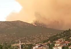 Ankaradaki orman yangını kontrol altına alındı