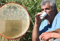 Şifalı diye içilen suda bakteri bulundu İnsan atıklarından olabilir