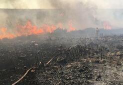 Makilik alanda başlayan yangın, yazlık evlere 100 metre kala söndürüldü