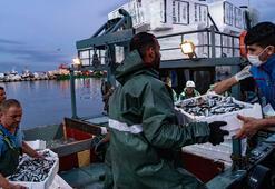 Balıkçılar ağlarını attı, yeni sezon büyük umutlarla açıldı