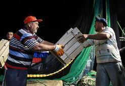 Av yasağı sona erdi Balıkçılar beş ay sonra yeniden denize açıldı