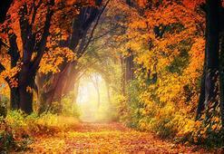 Hoş geldin Eylül sözleri Eylül ayı için en güzel karşılama sözleri