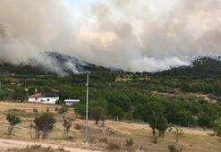 Ankarada aynı yerde yine orman yangını