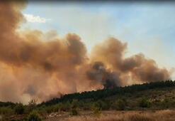 Çankırıda orman yangını