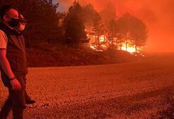 Bakan Pakdemirli, Denizlideki orman yangınında incelemelerde bulundu