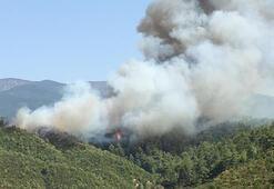 Son dakika... Alevler yerleşim yerlerine yaklaşıyor