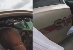 Polis aracına giren keçi resmi evrakları yedi
