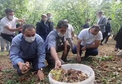 Sakarya Valisi mevsimlik işçilerle bir arada 2 kişi gözaltına alındı
