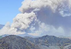 Son dakika: Hatayda orman yangını Bakan Pakdemirli inceleme yaptı