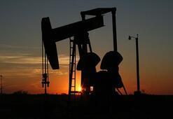 Rusyanın petrol gelirleri düşüşte