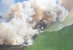 3 ilde orman yangını Ekipler bölgede