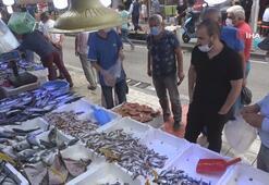 Samsun'da balık satışları giderek artıyor