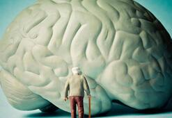 Alzheimer riskini azaltan 10 besin