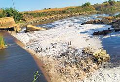 Trakya'nın suyu ve toprağı kirli