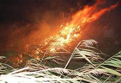 Gece yarısı korkutan yangın: Alev alev yandı