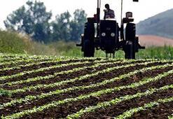GÜBRETAŞla tarımda yüksek verim