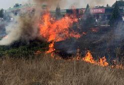 Milletvekiline meşaleli karşılama, yangına neden oldu