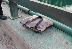 Çantadan şüphelendi Korkunç gerçek ortaya çıktı