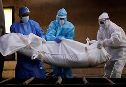 Son dakika: Dünya Sağlık Örgütünden korkutan korona virüs açıklaması Ölümler artacak...
