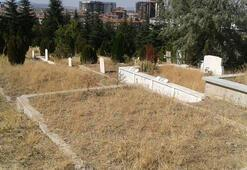 Mezar yerleri altından daha fazla değer kazandı