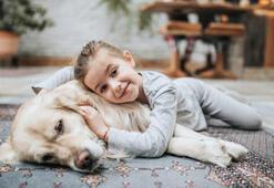 Hangi tasma modeli sevimli dostumuz için daha sağlıklı