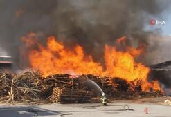 Erzincanda kereste fabrikasında büyük yangın