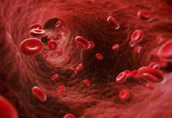 Hematolojik hastalığı olanlar dikkat Tedbirleri arttırın