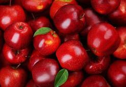 Türkiye Elma Üretim Haritası: Elma Nerelerde Yetişir İl İl En Çok Elma Yetiştirilen Bölgeler