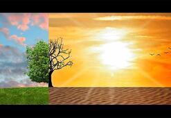 Türkiye İklim Bölgeleri Haritası: Türkiyede Bölgeleri Nerelerdir, Özellikleri Nelerdir