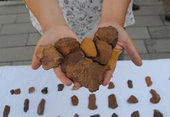 Tuncelide yontma taş aletler bulundu