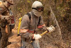 Brezilyada yangınlar dünyanın en büyük sulak alanını tehdit ediyor