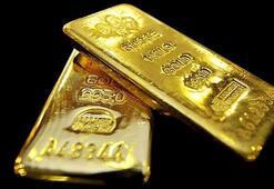 Altının kilogramıne kadar