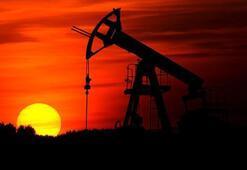 Petrolün varili 41,54 dolar