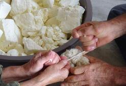 Yılda bir kez yapılan bu peynir için sipariş yağıyor
