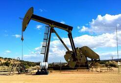 ABDnin petrol ihracatı yüzde 10 arttı
