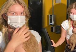 Aleyna Tilkiden konser açıklaması: Ölüme bile sebep olabilirsin