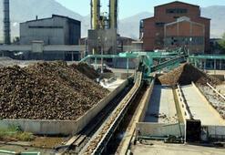 Türkiye Şeker Fabrikaları Haritası: Şeker Fabrikaları Nerededir, Hangi İllerde Bulunur