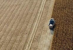 Hazine arazisinde çiftçilik için 6 pilot il