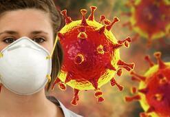 Corona virüs belirtileri nelerdir, ne zaman anlaşılır Korona virüs korunma yolları nelerdir