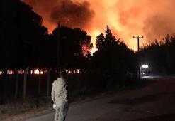 Ayvalıkta 80 hektar ormanlık alan yandı; kara tablo sabah ortaya çıktı