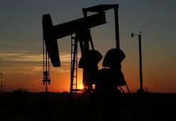 Türkiye Petrol Rafinerileri Haritası: Rafineri Nedir, Nerede Petrol Rafineleri Vardır